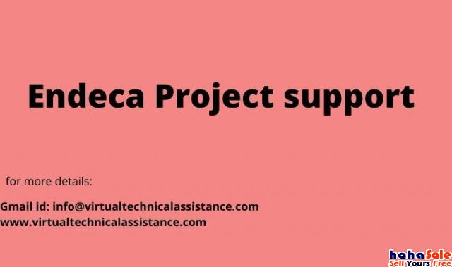 Endeca Project support Chenderiang Perak | hahaSale