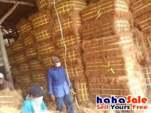 Coco (coconut) Fibre for sale Kuching Sarawak | hahaSale